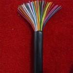 HPVV-10X2X0.5铝箔屏蔽通信电缆