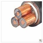 BVV1*10銅芯電纜