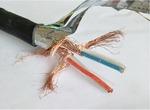 計算屏蔽機電纜DJYPVP,DJYVP