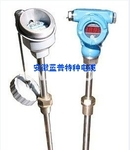 WZP-44SA鎧裝熱電阻/隔爆鉑電阻