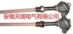 WRNT铜液测温热电偶/安徽天缆