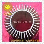 LED太阳花铝型材佛山生产厂家16