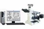 金相分析仪,金相显微镜