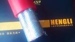 DJYJP2VP2-22鋼帶鎧裝信號電纜