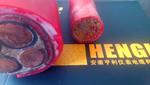 硅橡膠電纜用外力ZRC-YGC32阻燃