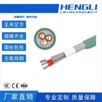 变频电缆BPGGTP2铜丝24锭1.3mm