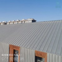 0.8mm厚鈦鋅板 萊茵鋅克屋面