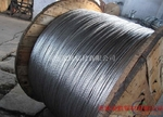 出口鋼芯鋁絞線
