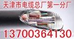 老边供应CPEVS信号音频电缆销售