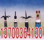 老边本安控制电缆IAKVVR电缆