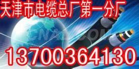 天水阻燃ZR485电缆规格