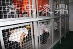 烟热迷宫体验室/迷宫烟热训练室