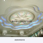 會議大廳造型鋁單板吊頂