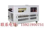 进口10kw单相汽油发电机
