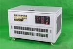 15kw汽油发电机_发电机气缸数量