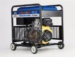 190A柴油发电电焊机日本进口