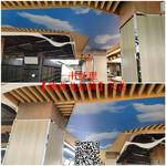 定制室内吊顶-3D打印彩绘铝单板