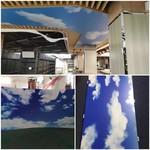 遊泳池天棚藍天白雲UV鋁單板吊頂