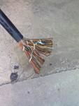 MYP屏蔽電纜3*16+1*10