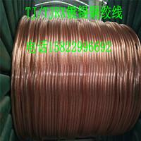 沽源150平方铜绞线风电接地