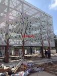 雕花造型鋁單板吊頂