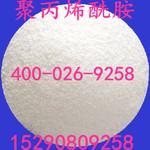 污水處理用絮凝劑 聚丙烯  胺