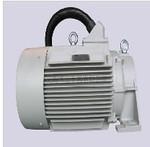YLS750W-4P康普艾L250風扇電機