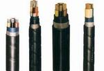 大對數通信電纜 HYA65*2*0.5