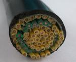 塑料绝缘控制电缆ZRKVVP-10×1.5