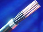 ZR-RVV 电源电缆 相关技术参数