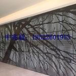 天津外立面穿铝板幕墙方案
